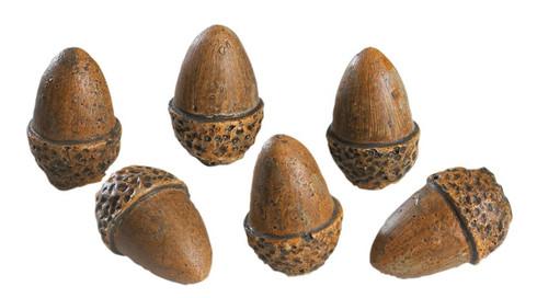 6 Acorns