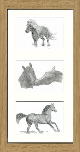 Oak Effect Framed Triptych (Three 6x4 inch prints)