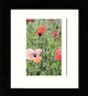 Black Framed Print (Medium)