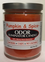 Pumpkin & Spice Odor Eliminator Candle