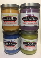 Mixed Case Odor Eliminator Candles