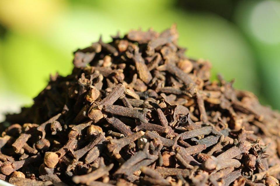 5 Uses for Clove Essential Oil