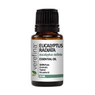 Eucalyptus Radiata Essential Oil - 15 ml