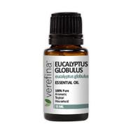 Eucalyptus Globulus Essential Oil - 15 ml