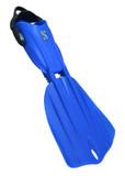 Blue Seawing Nova