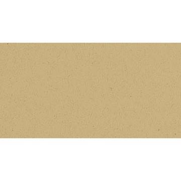 Desert Storm - 25 pk, Neenah Environment Cardstock -