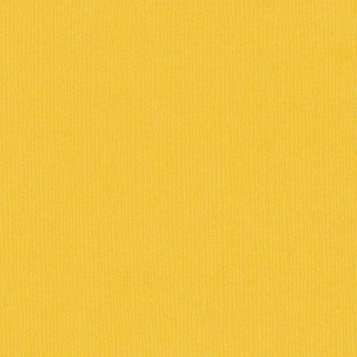 Bazzill Card Shoppe Cardstock, Marshmallow Chick, 25 pk -