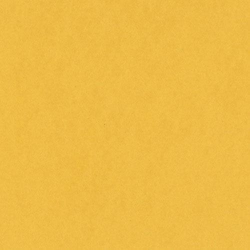 Bazzill Card Shoppe Cardstock, Banana Split, 25 pk -