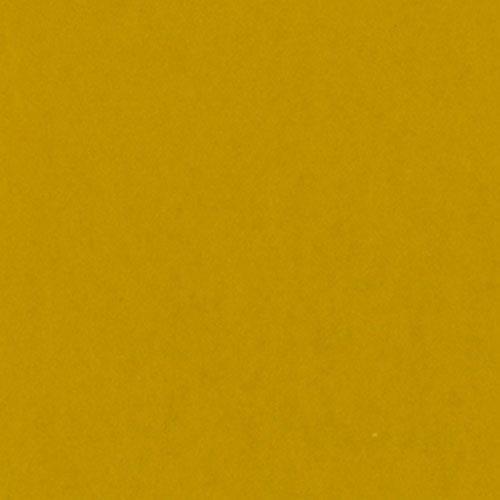 Bazzill Card Shoppe Cardstock, Gold Coins, 25 pk -
