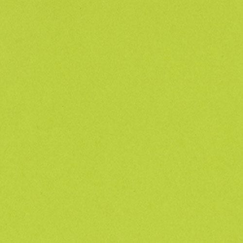Bazzill Card Shoppe Cardstock, Juicy Pear, 25 pk -