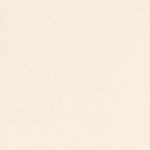 Bazzill Card Shoppe Cardstock, Butter Mints, 25 pk -