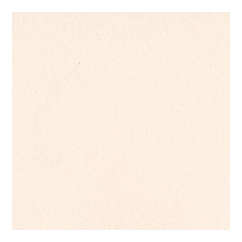 Bazzill Card Shoppe Cardstock, Pale Rose, 25 pk -