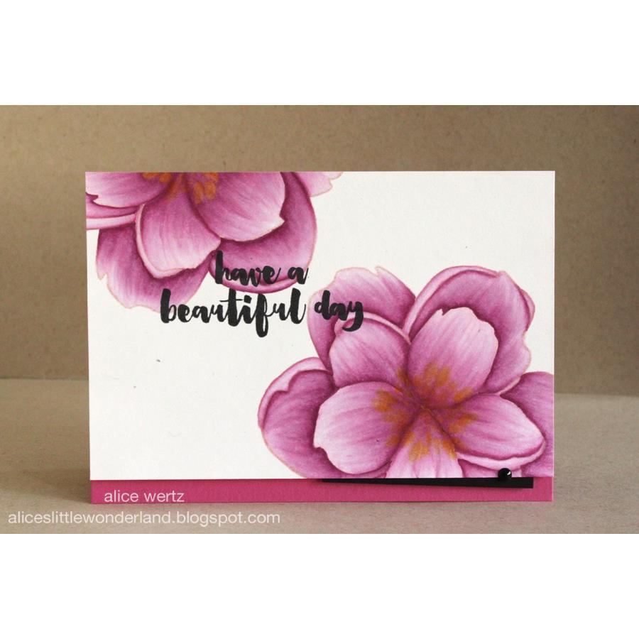 Mondo Magnolia by Julie Ebersole, Essentials by Ellen Clear Stamps -