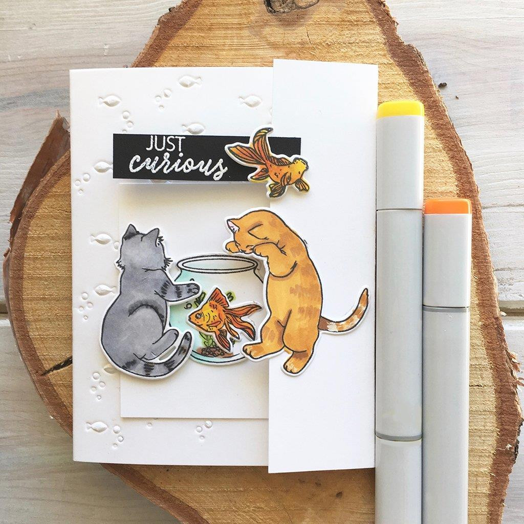 Curious Cat, Hero Arts Clear Stamps - 857009213296