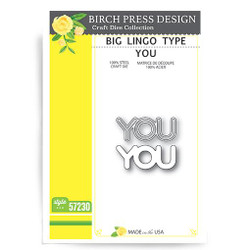 Big Lingo Type You, Birch Press Design Dies -