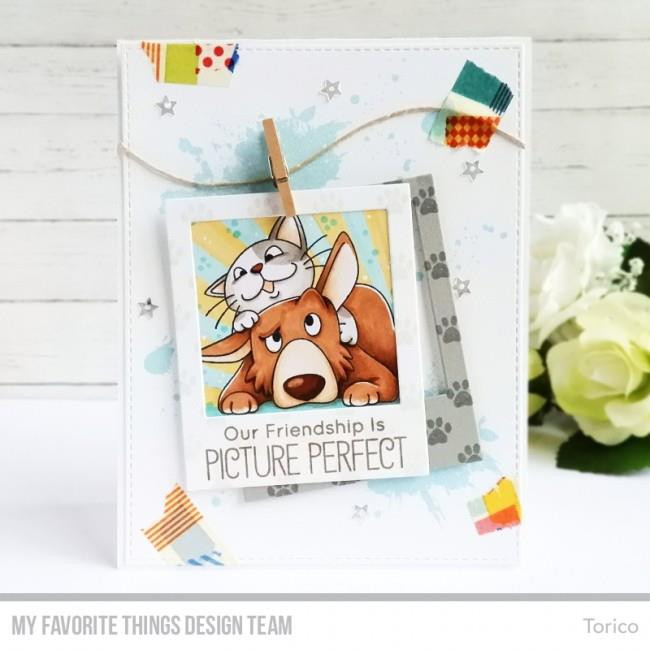 Picture Perfect by Birdie Brown, My Favorite Things Clear Stamps - 849923030431