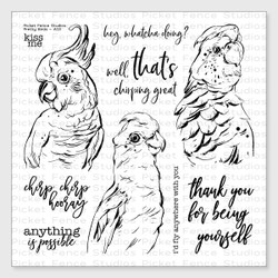 Pretty  Birds, Picket Fence Studios Clear Stamps - 745557992612