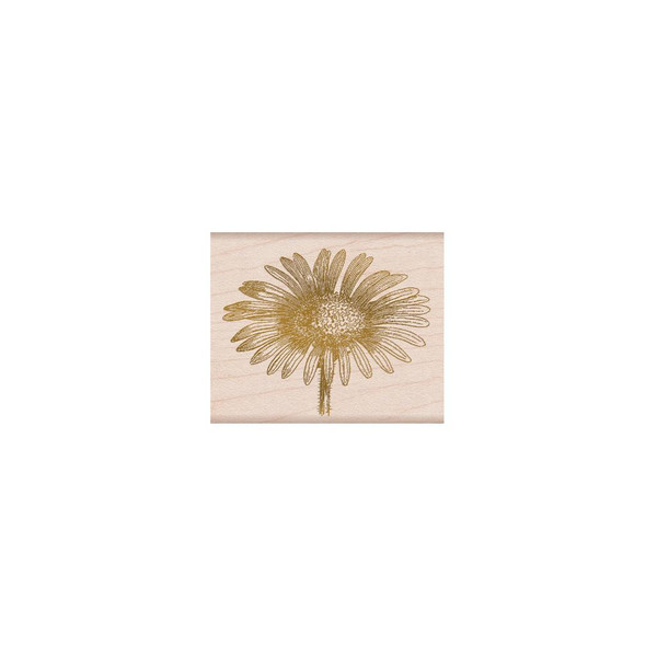 From The Vault: Daisy, Hero Arts Wood Block Stamps - 857009223950