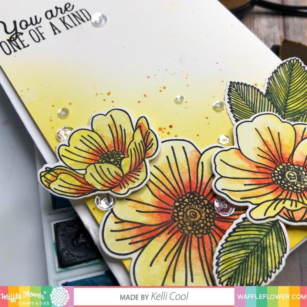 Wild Roses, Waffle Flower Dies - 644216554027