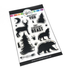 Wild About You, Catherine Pooler Clear Stamps - 819447023882