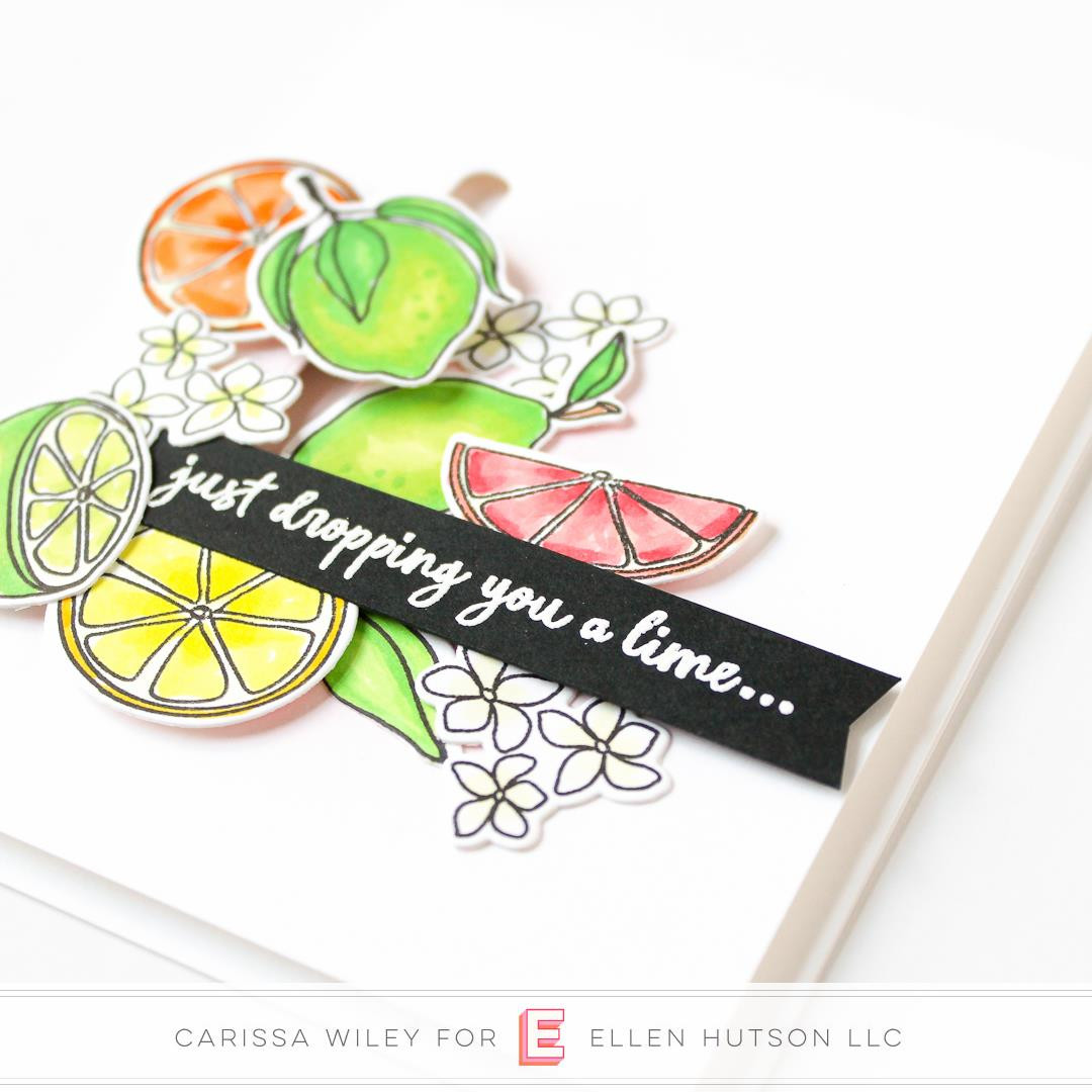 Squeeze The Day by Julie Ebersole, Essentials By Ellen Clear Stamps -