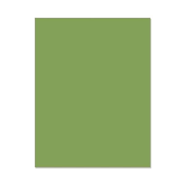 Hero Hues Meadow, Hero Arts Cardstock - 857009233546
