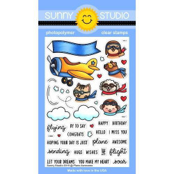 Plane Awesome, Sunny Studio Clear Stamps -