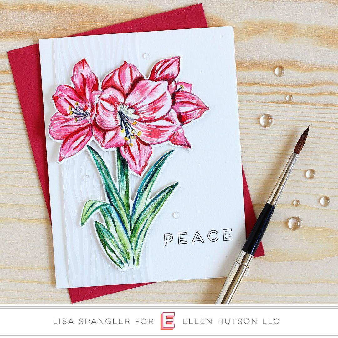 Mondo Amaryllis by Julie Ebersole, Essentials By Ellen Clear Stamps -