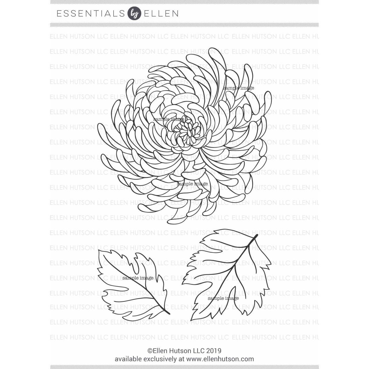 Mondo Chrysanthemum by Julie Ebersole, Essentials by Ellen Clear Stamps -