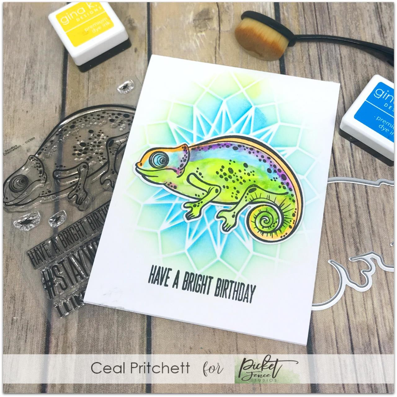 Charlie The Chameleon, Picket Fence Studios Clear Stamps - 745557999376