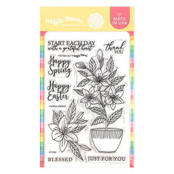 Potted Lily, Waffle Flower Clear Stamps - 644216788590