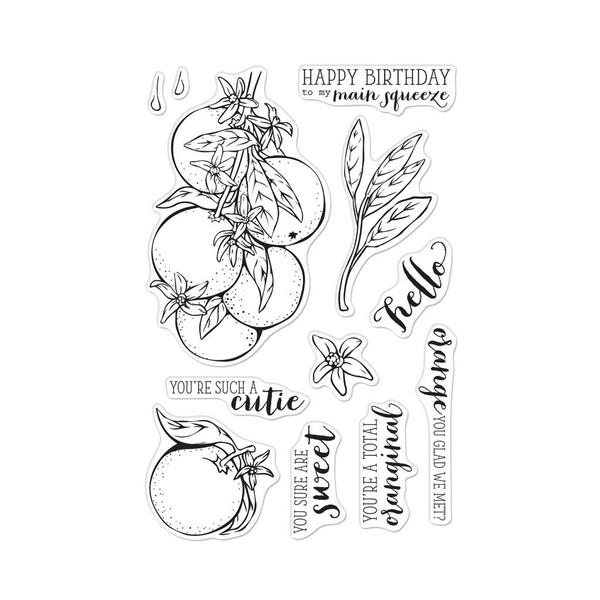 Hero Florals Orange Blossoms, Hero Arts Clear Stamps - 857009250512