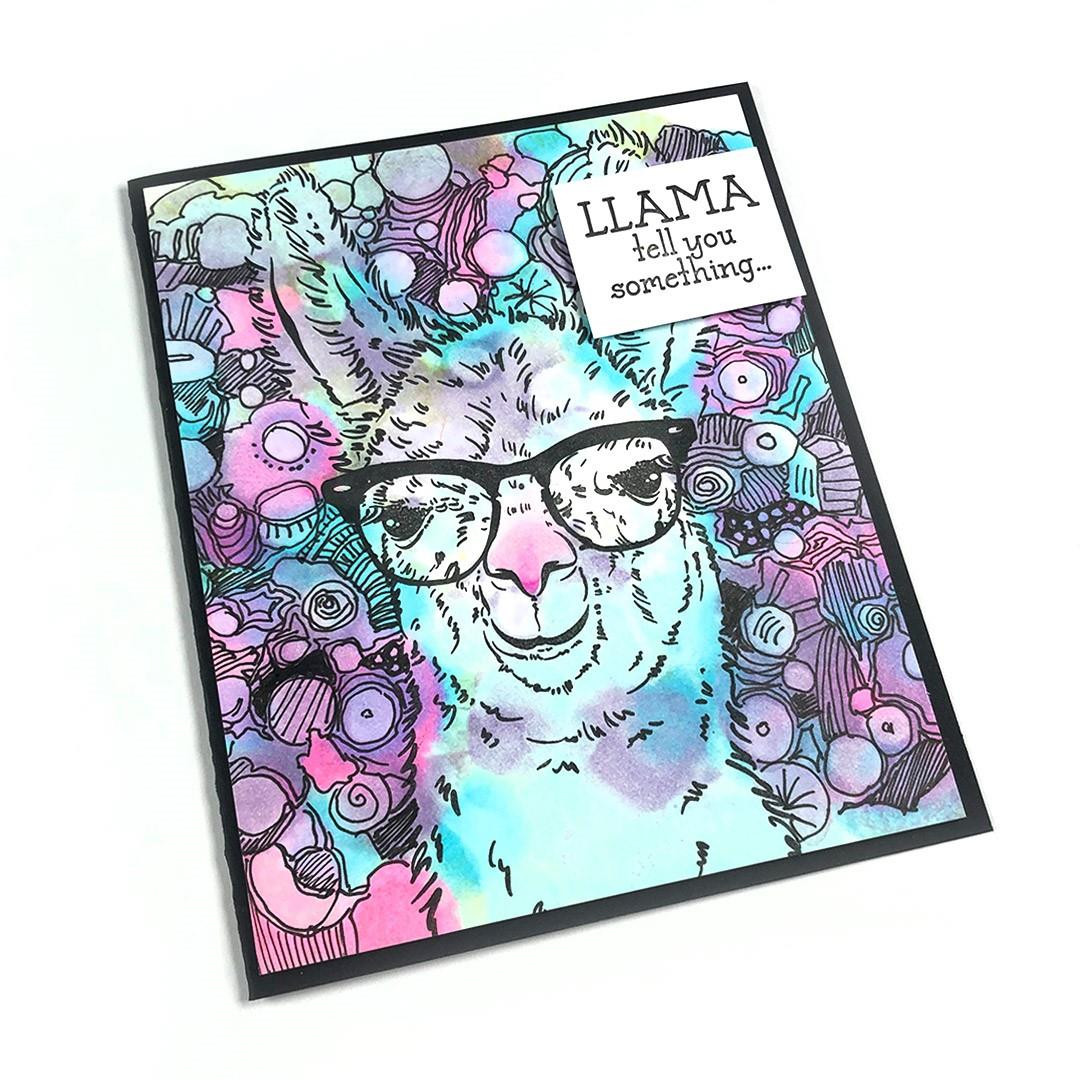 Llama Tell You, Colorado Craft Company Clear Stamps - 810043853026