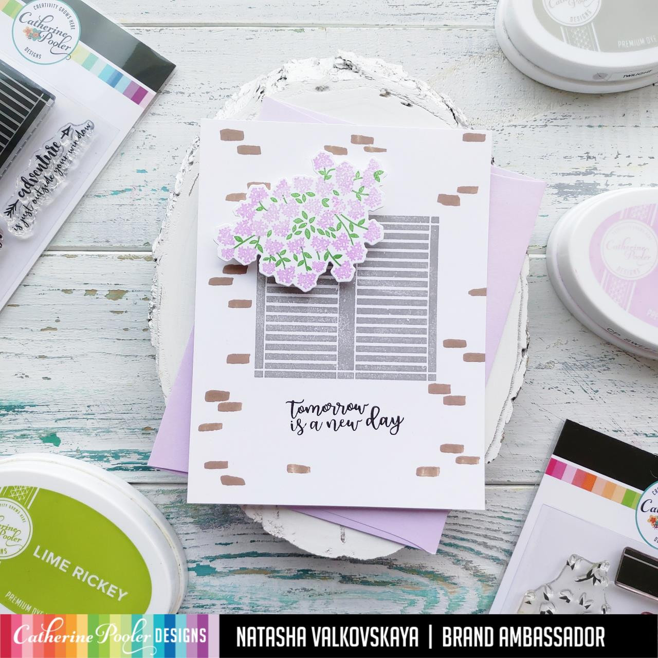 Outside Your Window, Catherine Pooler Clear Stamps - 819447026081