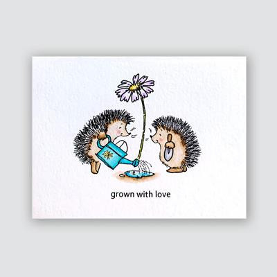 Grown With Love, Penny Black Clear Stamps - 759668307135