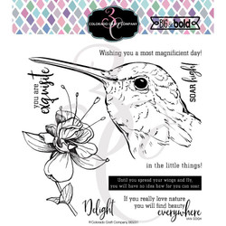 Hummingbird Delight, Colorado Craft Company Clear Stamps -