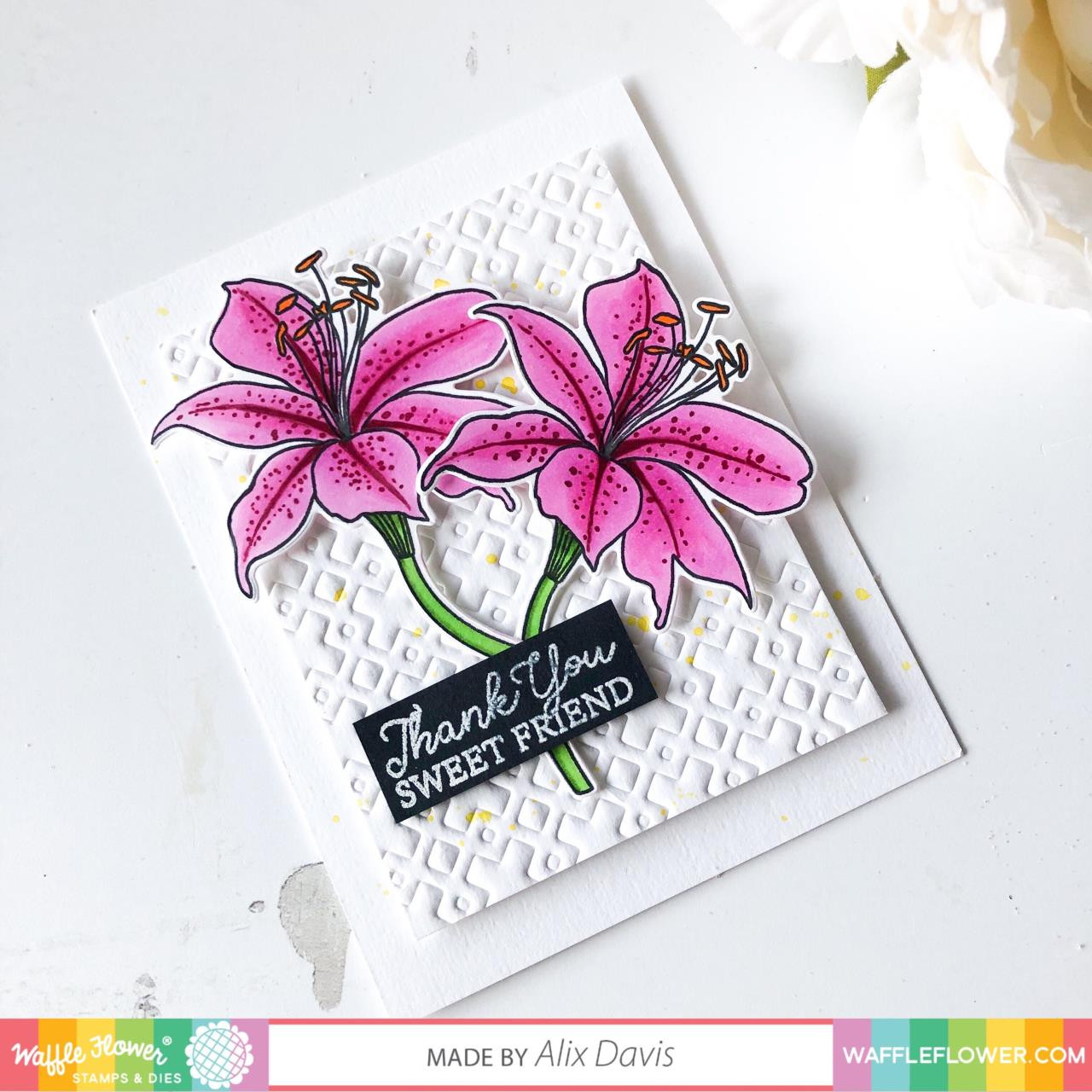 Stitched Sentiments, Waffle Flower Clear Stamps - 780348638997
