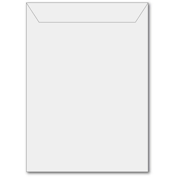 Large - 50 pk, Memory Box Storage Pouches - 873980240014