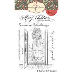 Winter Season Poinsettia, Colorado Craft Company Clear Stamps -