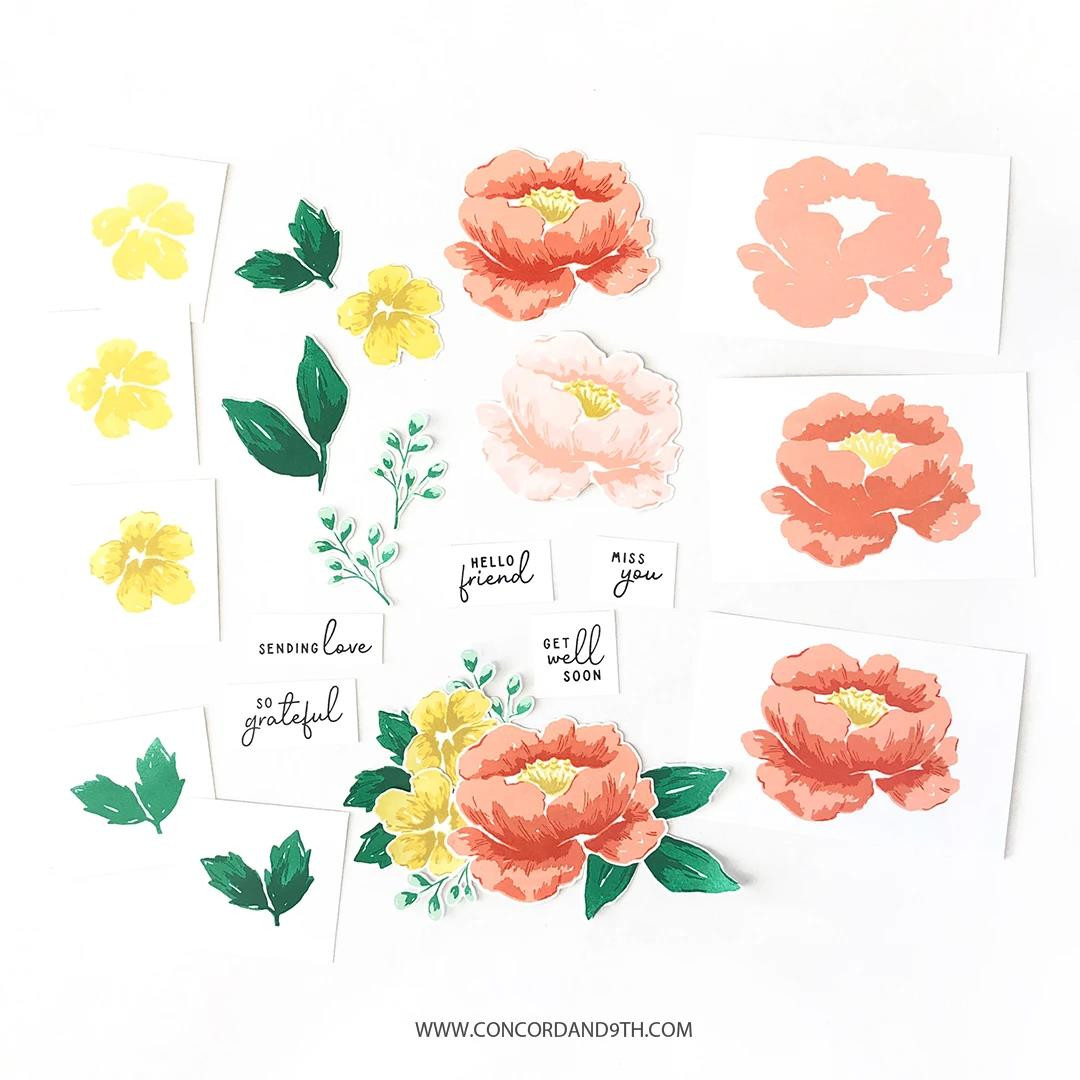 Painted Peony, Concord & 9th Clear Stamps -