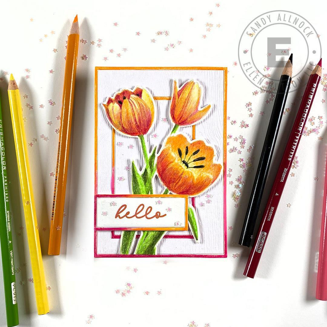 Mondo Tulip by Julie Ebersole, Essentials by Ellen Designer Dies -