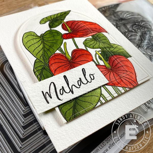 Mondo Anthurium by Julie Ebersole, Summer of Stamping Clear Stamps -