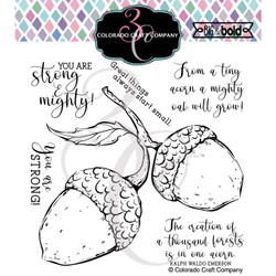 Mighty Acorn, Colorado Craft Company Clear Stamps -