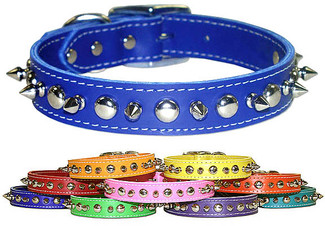 Signature Leather Spiked Dog Collars