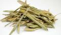 Olive Whole Leaf