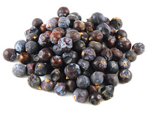 Juniper Berry is a warming, disinfectant remedy suited to chronic, cold conditions. Not used where there is kidney disease or irritation. Often combined with other remedies. Mucous cystitis, vaginal infection, too frequent urination, edema. Warming and kidney cleansing properties have made it an aid in chronic arthritis, rheumatism and myalgia. Promotes digestion and as an intestinal disinfectant. Used internally and externally for psoriasis, acne, eczema and dermatitis.