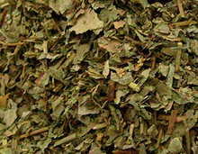 Lady's Mantle is a respected Old World herb for many female conditions with chronic infection and discharges. Vaginal discharges/itching, cervicitis, urethritis. A progesteronic herb that controls menstrual bleeding: early or heavy menstruation, intermenstrual bleeding, postpartum bleeding, menopausal flooding. Hemmorhage and bleeding in general. Symptoms of progesterone deficiency: PMS, painful menstruation, menopausal symptoms with bleeding. Breast swelling.