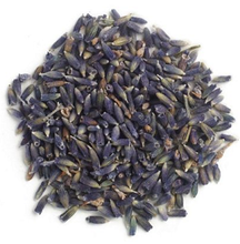 Stimulating and calming. For fever with irritation it will calm and cool; for those with conditions with cold and chill it will warm. Similarly it can be used for both nervous hypo- and hyper-function. Heart palpitations and irritability can be relieved, as well as depression with weakness. It is this versatility that makes Lavender such a useful herb. Insomnia and pain. Wonderfully adaptable to children's need for calming. Depression, anxiety. Weakness, dizziness. Migraine. Hypertension. Beginning stage of cold and flu; sinus congestion; eruptive diseases (measles, etc.). Hard or painful labor. Stomach cramp, Irritable bowel syndrome. Nausea and vomiting. Has proven antiseptic properties and has found a use in many types of lung, urinary tract, intestinal and other infections. Externally has antiseptic and anti-inflammatory properties; has been used for many types of wounds, insect bites, skin conditions of all types, skin parasites.