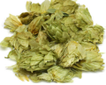 Hops is valued for its effects in nervous digestive disorders. Indigestion worse with stress. Colitis, irritable bowel syndrome. Bloating. Anorexia. Nervous irritability and unrest. Insomnia from mental over activity, stress. Pain (esp. Mouth, ear, muscles, neuralgic; int. and ext.). Sexual over stimulation. Contains estrogenic substances; has been used for PMS, pain at onset of menses. Promotes milk flow.