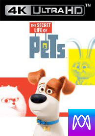 Secret Life of Pets - iTunes 4K (Digital Code)